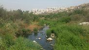 צילום: איגוד ערים איכות הסביבה שומרון