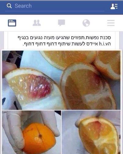 """תפוזי דם נגועים באיידס! לא באמת (מקור: """"לא רלוונטי"""")"""