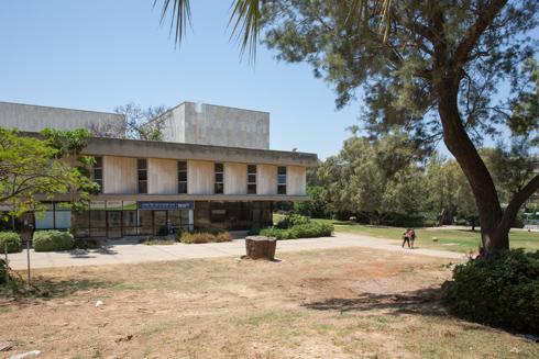 השטח המיועד לבנייה (צילום: דור נבו)