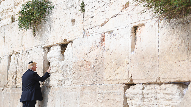 (צילום: ישראל ברדוגו) (צילום: ישראל ברדוגו)