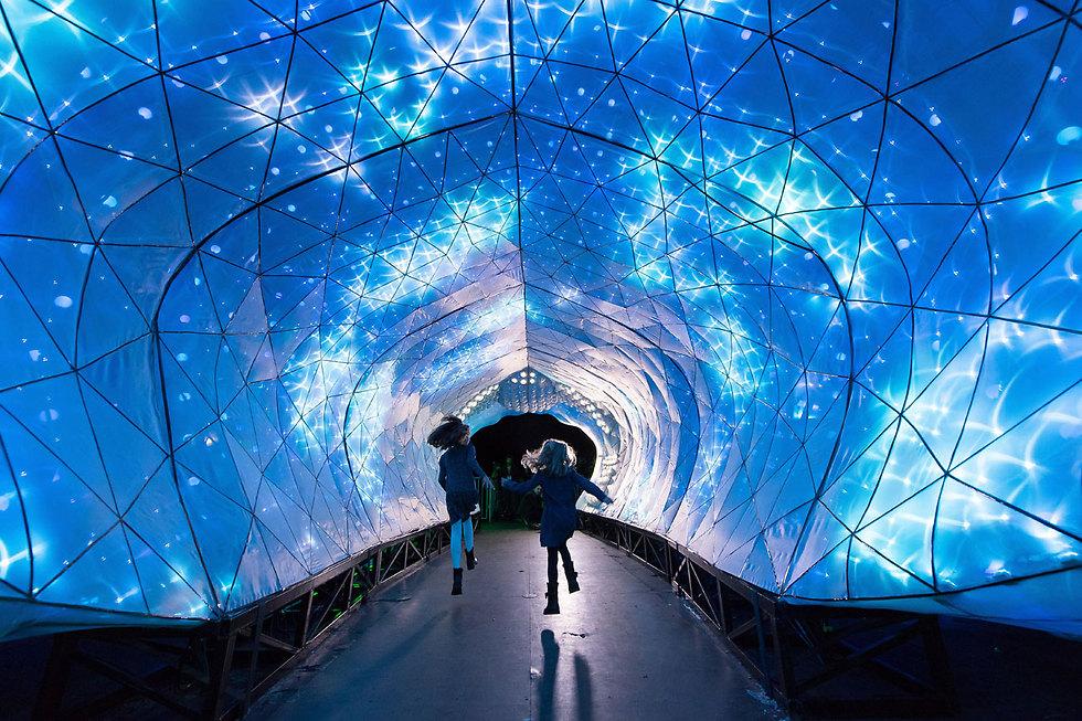 פסטיבל אורות בגן החיות טארונגה בסידני, אוסטרליה (צילום: EPA)