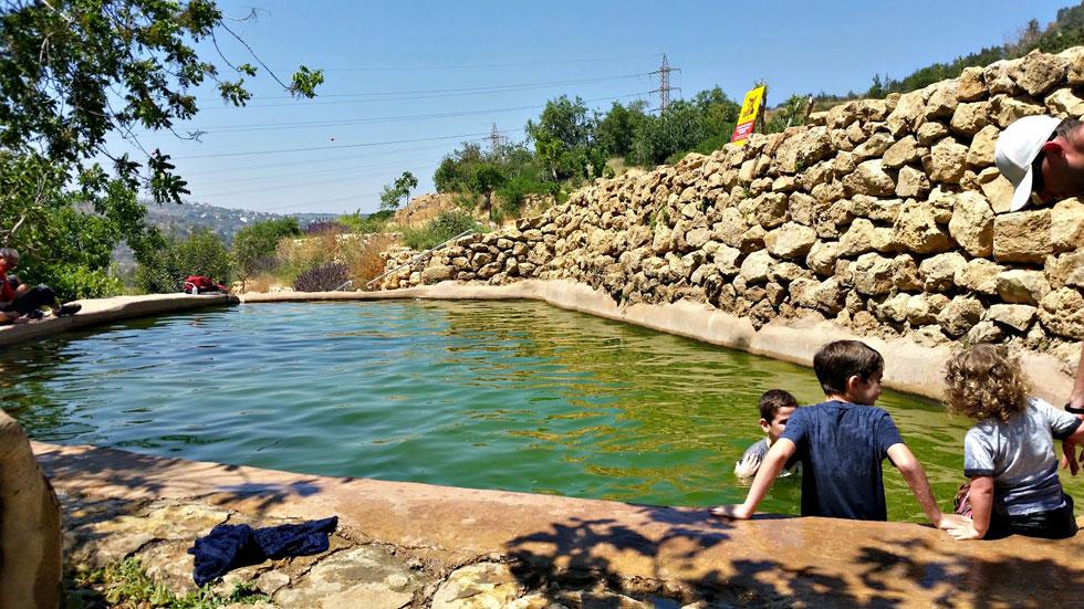 """""""החוף של ירושלים"""". טובלים את הרגליים בבריכה בעין לבן (צילום: עינב לנדאו)"""
