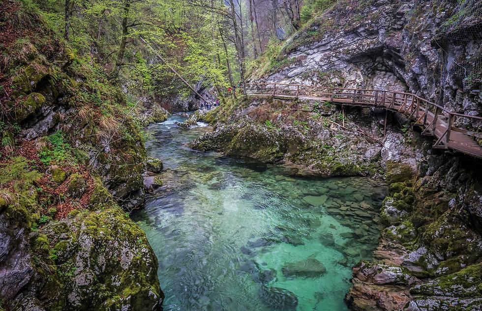 ערוץ וינטגר, סלובניה (צילום: איתמר קוטלר)