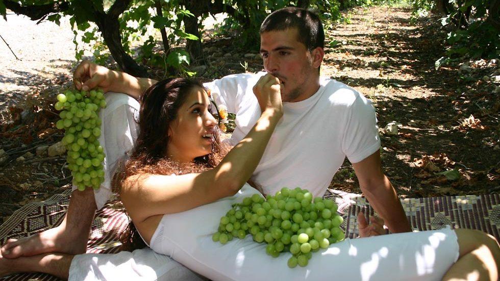 """""""אהבה בין הכרמים"""" (צילום: שמיל זיו)"""