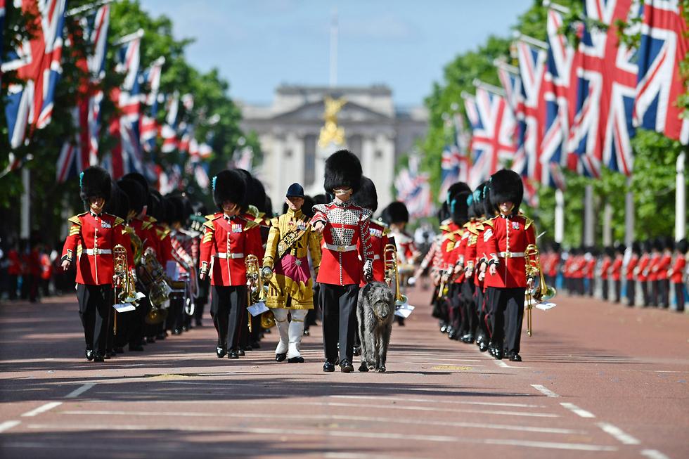 """מצעד צבאי בלונדון, """"סקירת הקולונל"""", בהשתתפות חיילים מהצבא הבריטי ומהמשמר האירי בהשתתפות הנסיך ויליאם (צילום: EPA, SGT RUPERT FRERE / BRITISH MINISTRY OF DEFENCE )"""