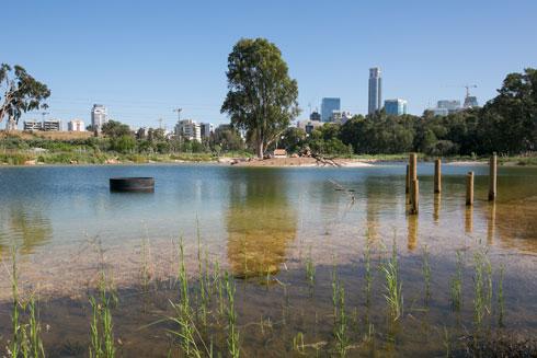 צמחיית המים כבר מתפתחת באגם. האתר פתוח בכל ימות השבוע כולל שבת (צילום: דור נבו)