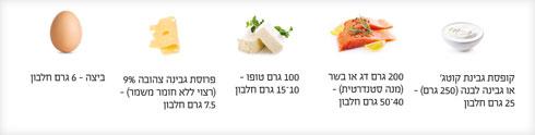 דוגמאות למזונות עשירים בחלבון (צילום: Shutterstock)