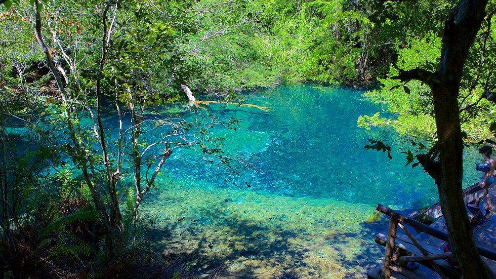 לבלות כאן יום שלם: השמורה האקולוגית בפונטה קאנה ()