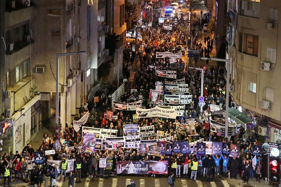 הפגנה נגד משלוחים חיים בישראל, 2017 (צילום: רויטל טופיול) (צילום: רויטל טופיול)