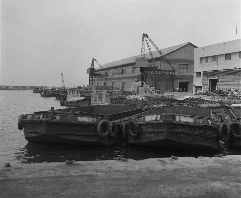 נמל יפו, 1954 (צילום: וילי פולנדר)