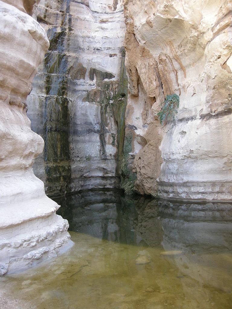 עין עקב (צילום: Yoavd (מתוך ויקיפדיה))