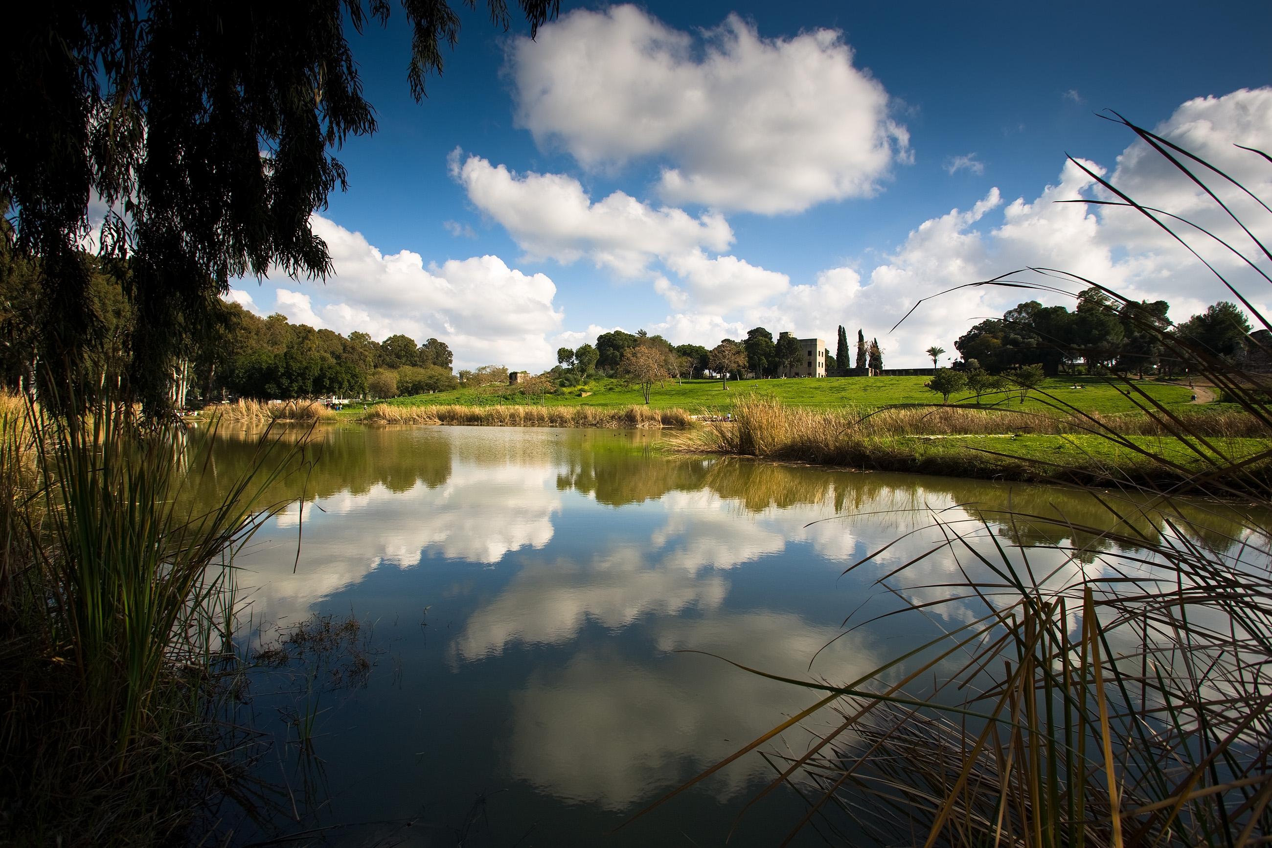 נוף מרהיב: גן לאומי ירקון (צילום: רשות שמורות הטבע והגנים)