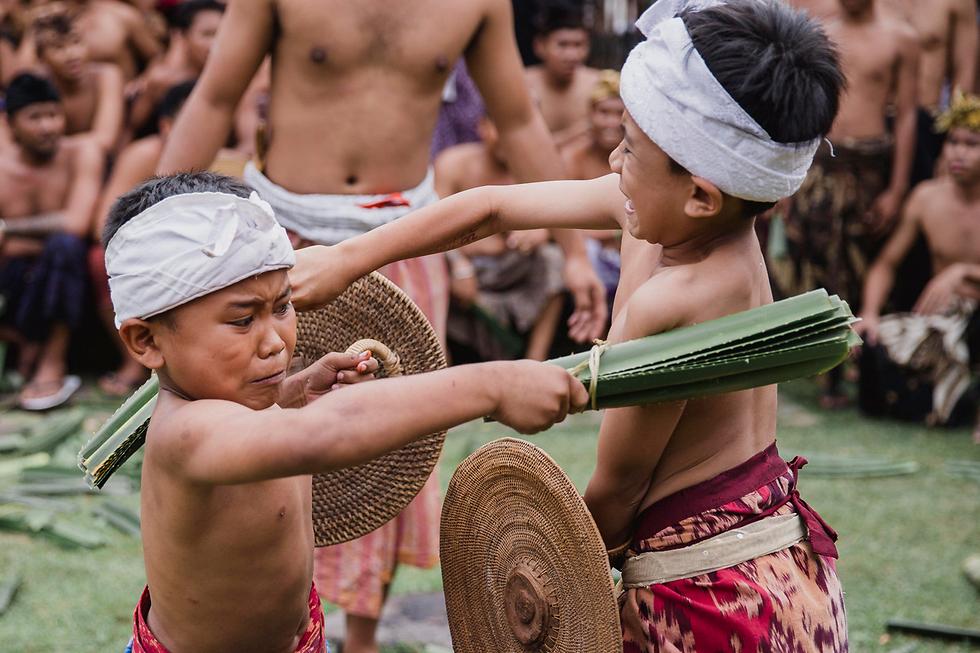 לוחמים קטנטנים חמושים בעלים קוצניים מקיימים טקס קדושה בבאלי, אינדונזיה (צילום: EPA)