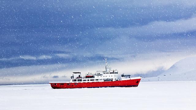 האביב מגיע אל האזור הארקטי (צילום: shutterstock) (צילום: shutterstock)