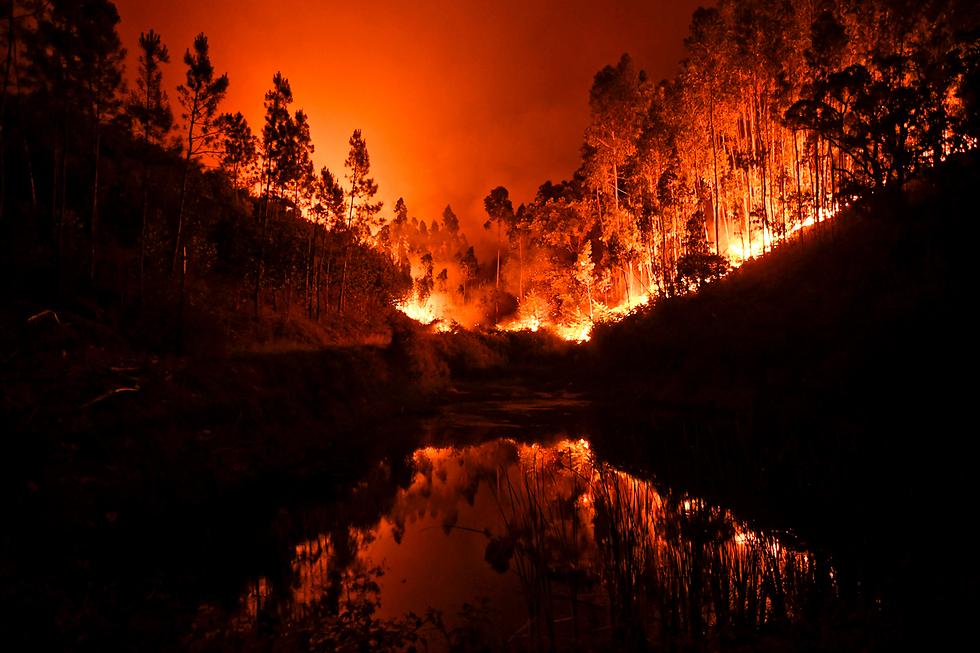 שריפת הענק בפורטוגל, שבה נהרגו יותר מ-60 בני אדם (צילום: AFP)