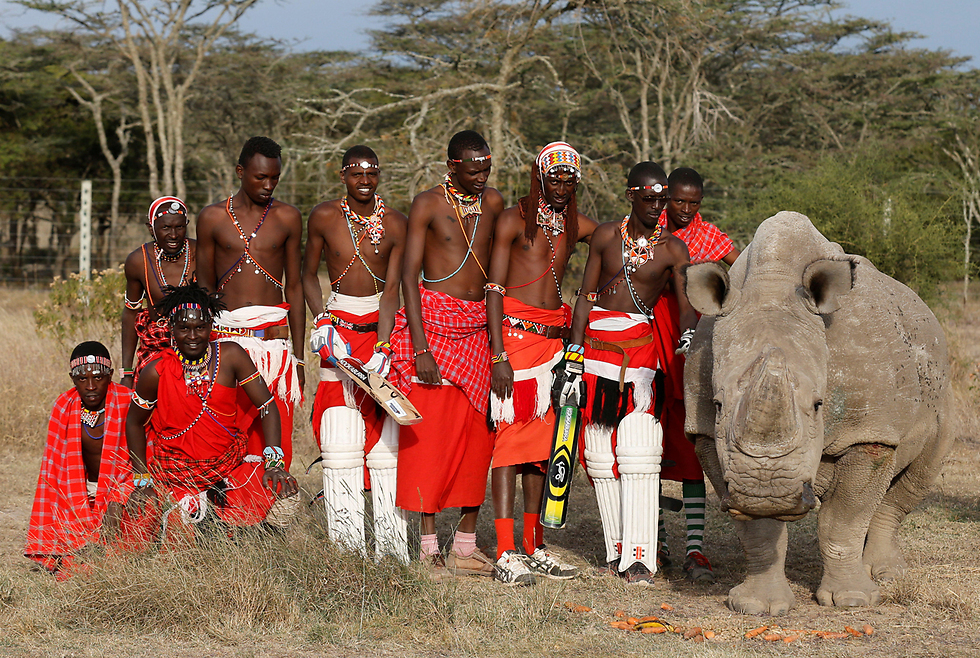 עם הקרנפים שלי. שחקני קריקט אחרי טורניר צדקה, קניה (צילום: רויטרס)