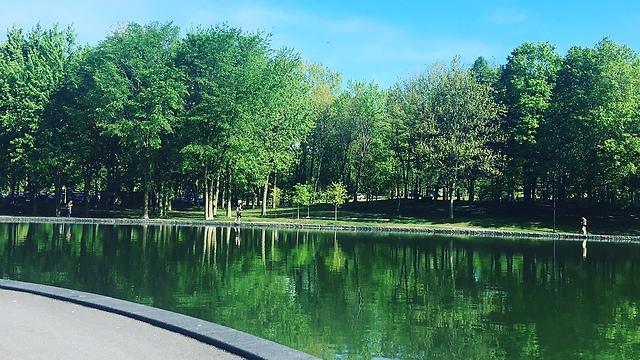"""פארק מונטריאול: """"אין לוותר עליו בשום פנים ואופן"""" (צילום שירי תמם)"""