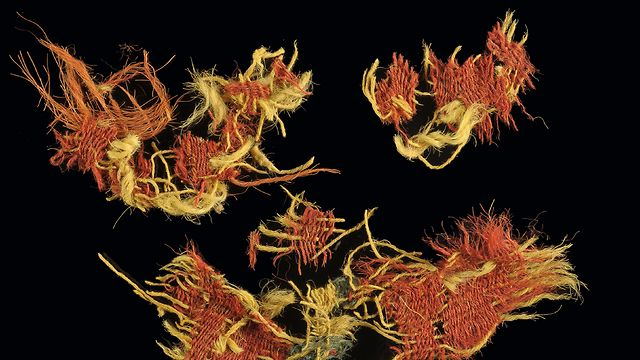 Microscopic magnification (x60) of woolen textile from Timna dyed in red and blue stripes (Photo: Israel Antiquities Authority)