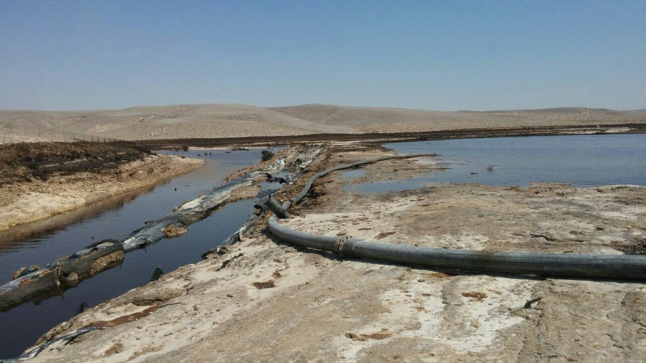 The Asalim Stream (Photo: Ministry of Environmental Prtection)