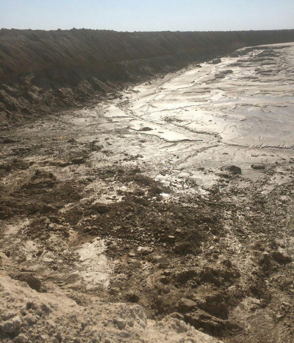 (צילום: עודד נצר, המשרד להגנת הסביבה) (צילום: עודד נצר, המשרד להגנת הסביבה)