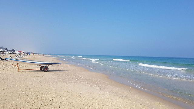 חם בחוף בת ים (צילום: אבי חי) (צילום: אבי חי)
