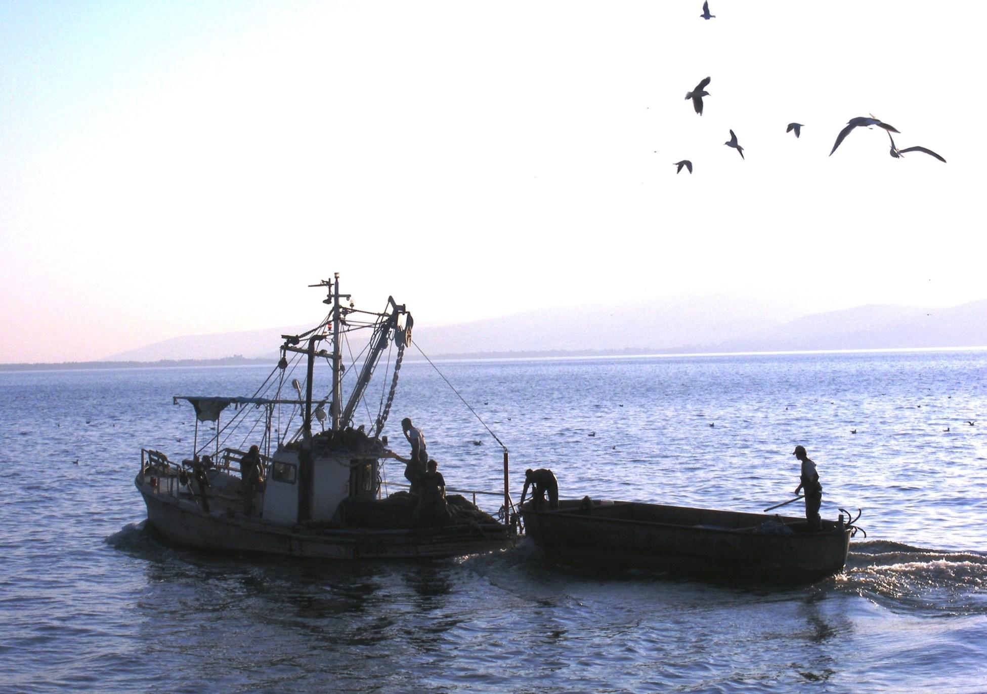 להיות דייג ליום אחד: נמל עין גב בכנרת (צילום: תקשורות יעל שביט)