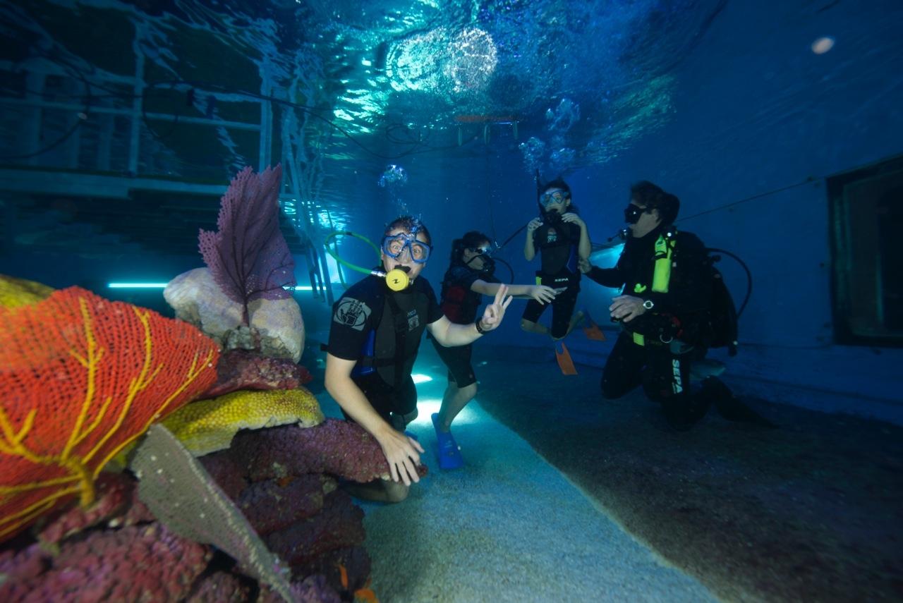 בתוך הים: לצלול בעולם מרהיב ועמוק (צילום: פארק המצפה התת ימי באילת)