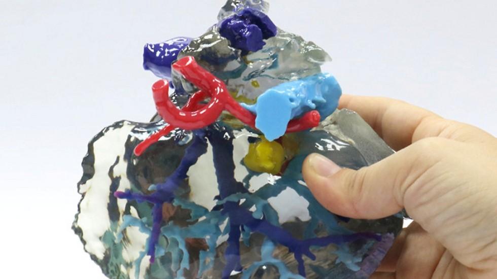 """Пока модели из пластмассы, но не за горами - из живых тканей. Фото: пресс-служба """"Ихилов"""""""