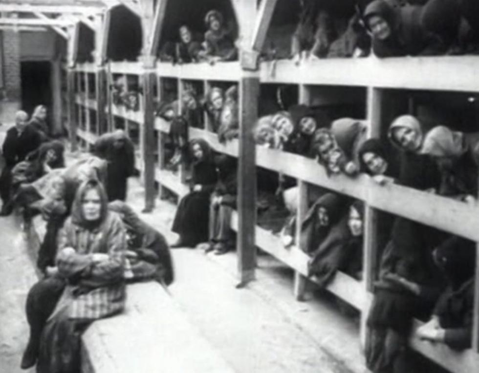 רוכזו ונשלחו למחנות ההשמדה (צילום: רויטרס)