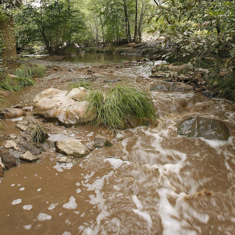 שיטפון בזק שהיכה בנהר (צילום: AP)