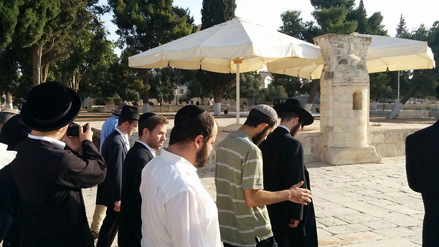 Jew Detector: Jewish Visitors Go To The Temple Mount For 1st Time Since