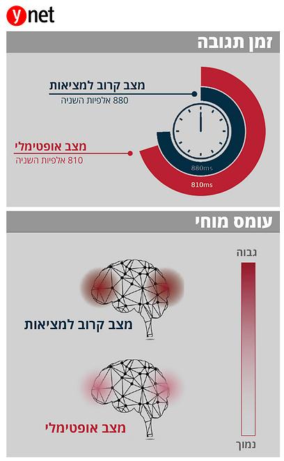 מה גילו באודי (גרפיקה, ynet)