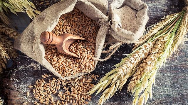 מפחית סיכון להתקף לב ב-31% - לחם מדגנים מלאים (צילום: shutterstock)