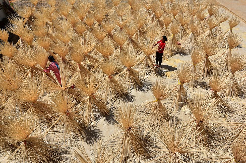 עובדים מייבשים במבוקים במחוז ג'יאנגשי בסין (צילום: רויטרס)