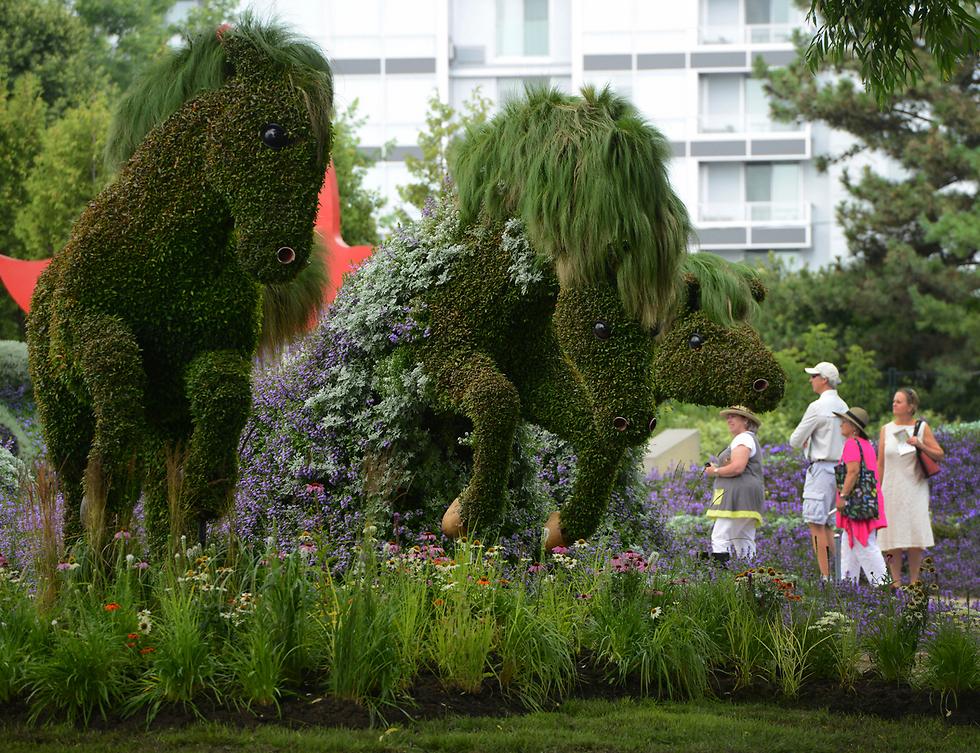 תערוכת גינון בפארק בקוויבק, קנדה (צילום: AP)