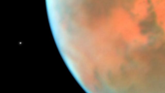 """הירח פובוס. נקודה קטנטנה אבל מקיפה את מאדים במהירות שיא.  (צילום: נאס""""א) (צילום: נאס"""