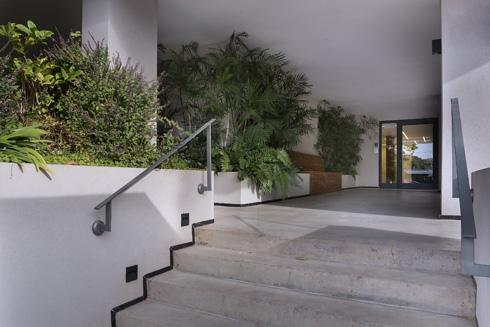 הכניסה החדשה לבניין. רצפה של בטון מוחלק וצמחייה (צילום: עמית גושר)