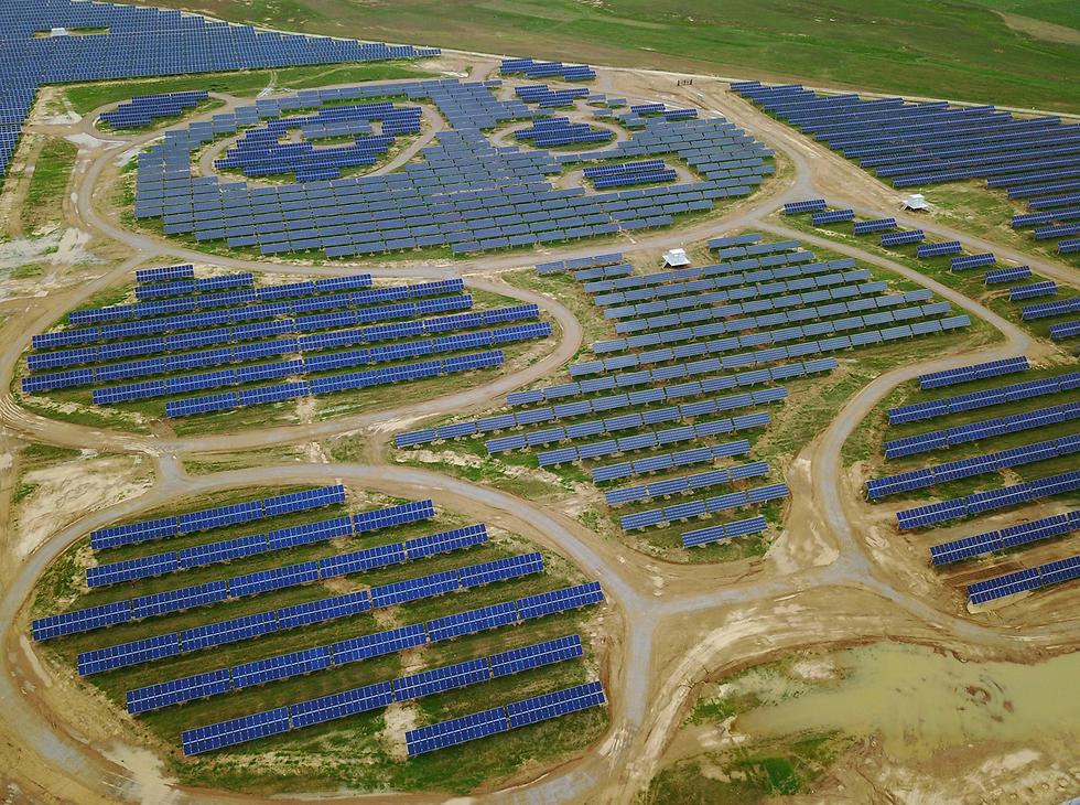 דובונת בשדה. לוחות סולריים מוצבים בצורת פנדה בסין (צילום: EPA)