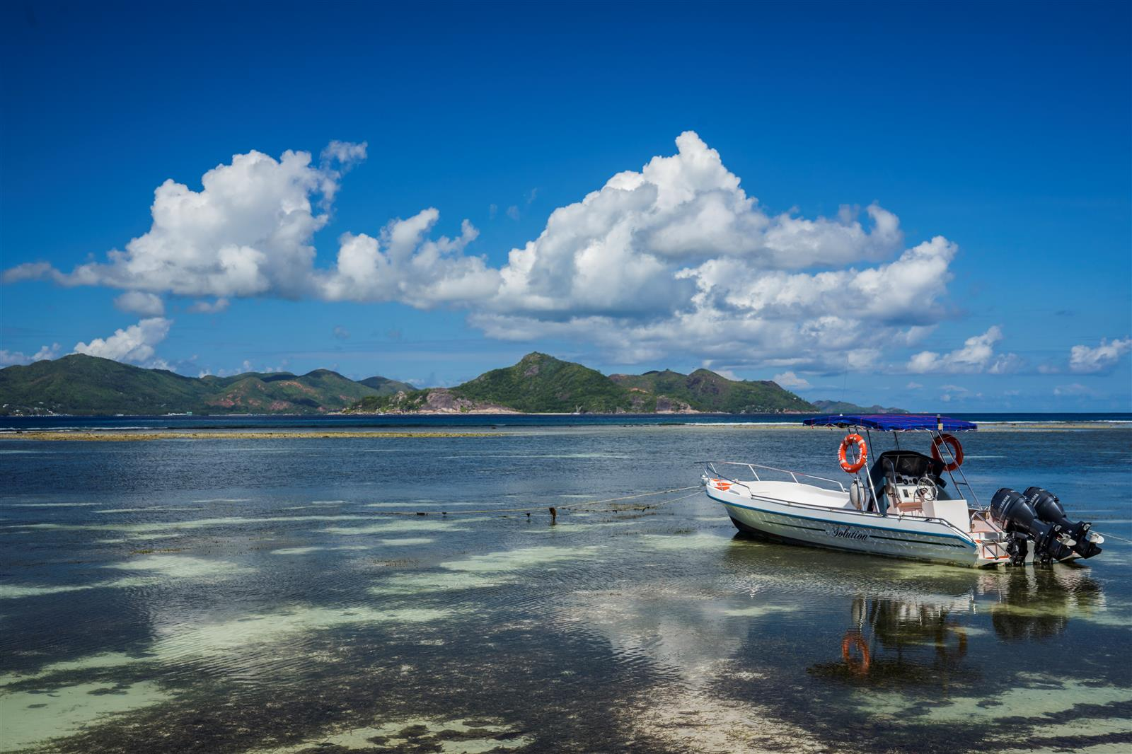 תתרגלו להתנייד באמצעות הסירות (צילום: איתמר קוטלר) (צילום: איתמר קוטלר)
