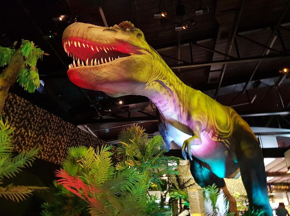 תערוכת הדינוזאורים (צילום: קרן נתנזון ויץ)