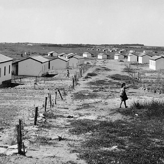 """הקמת שיכוני הקבע בקדימה, שיועדו לתושבי המעברה הסמוכה, תחילת שנות ה־50. """"מי שלא ראה את האוהלים במעברה, לא ראה סבל בחיים"""""""