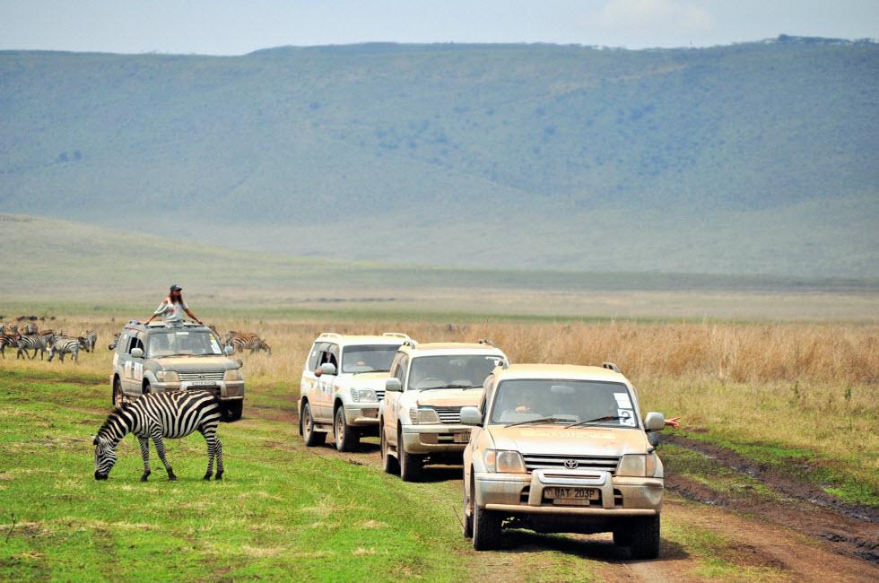 חוצים את מזרח אפריקה (צילום: דניאל פלג) (צילום: דניאל פלג)