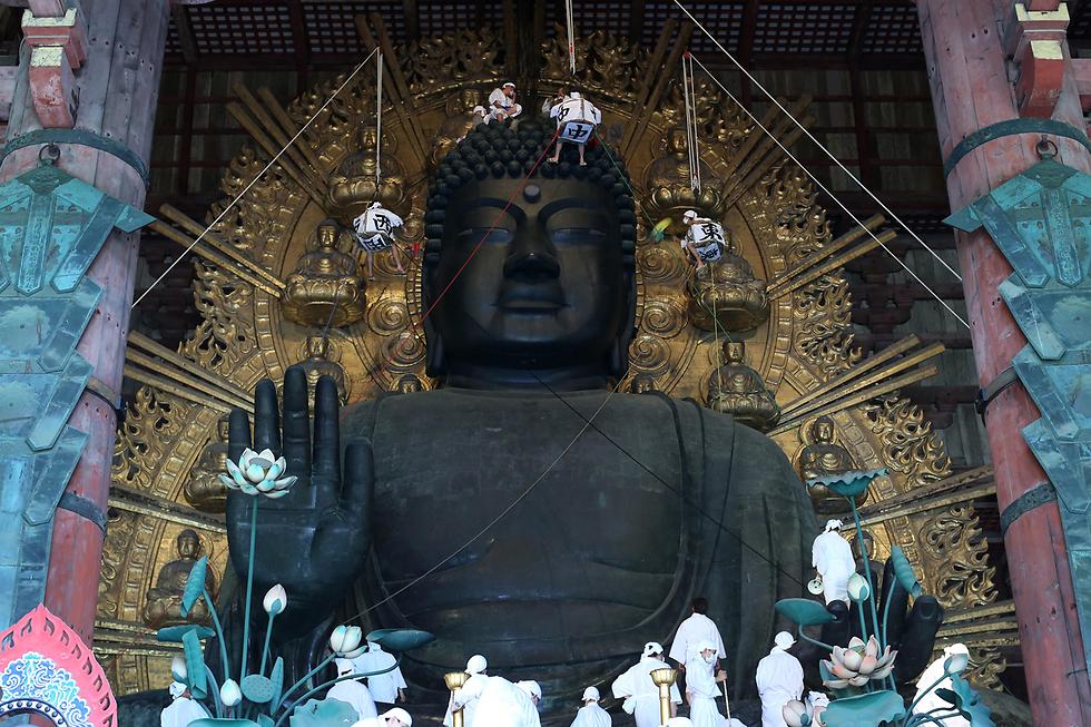 נזירים בודהיסטים מנקים אבק מפסל בודהה שגובהו 15 מטר בנארה, יפן (צילום: gettyimages)