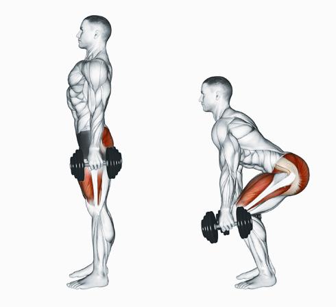 חיזוק שרירי הישבן תורם גם לחיזוק אזור הגב ומגן עליו מפני פציעות ושחיקה (צילום: Shuttestock)