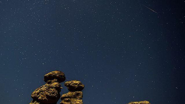 והנה עוד תמונה טובה ממקדוניה (צילום: AFP)