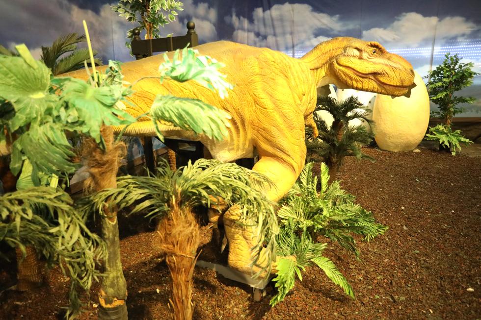 תערוכת הדינוזאורים. מסלול הליכה בתוך האנגר המציג בובות מכניות בגודל מרשים שמזיזות את הזנב והראש (צילום: רפי דלויה)