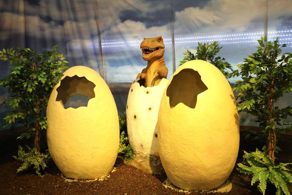 ליד כל דינוזאור יש הסבר שכולל את שמו ואזורי המחייה שלו (צילום: רפי דלויה)