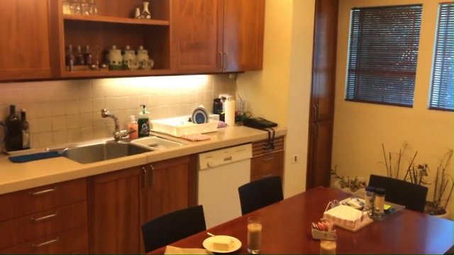 Кухня в резиденции премьера из нашумевшего видеофильма Николь Райдман