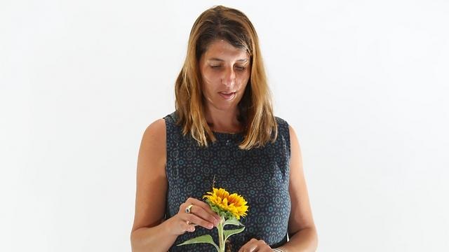 פיאמטה מרטגני, אמנות שזירת פרחים ()