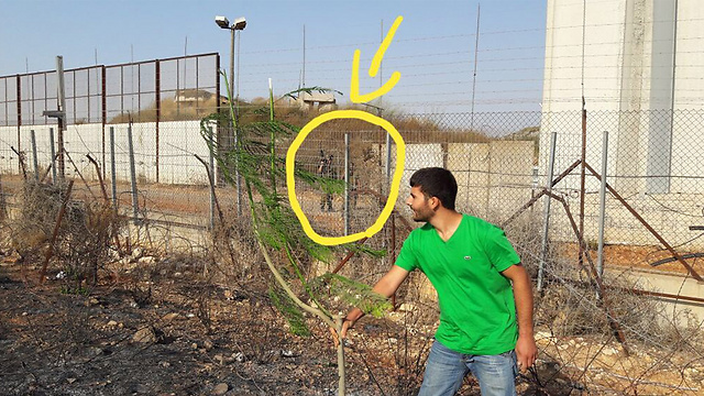 Planting a tree in front of an IDF soldier